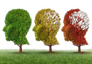 Illustration of Trees with Leaves Depicting Memory Loss